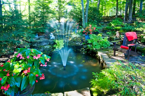Jardin piniere ©BCGD